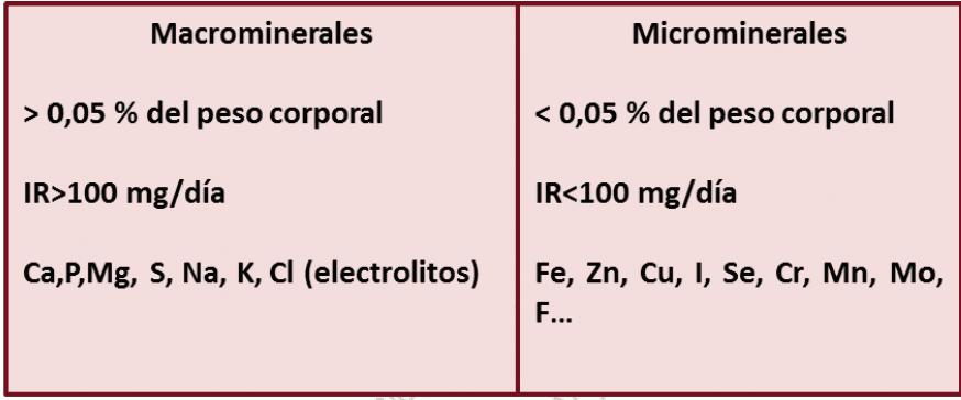Principales características de los macrominerales y microminerales