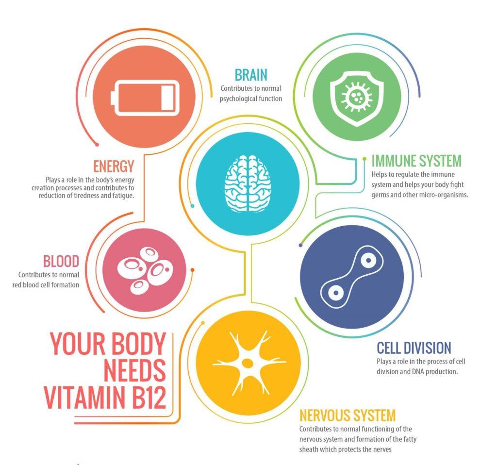 Principales beneficios de la vitamina B12