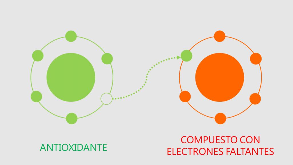 antioxidantes donacion electrones