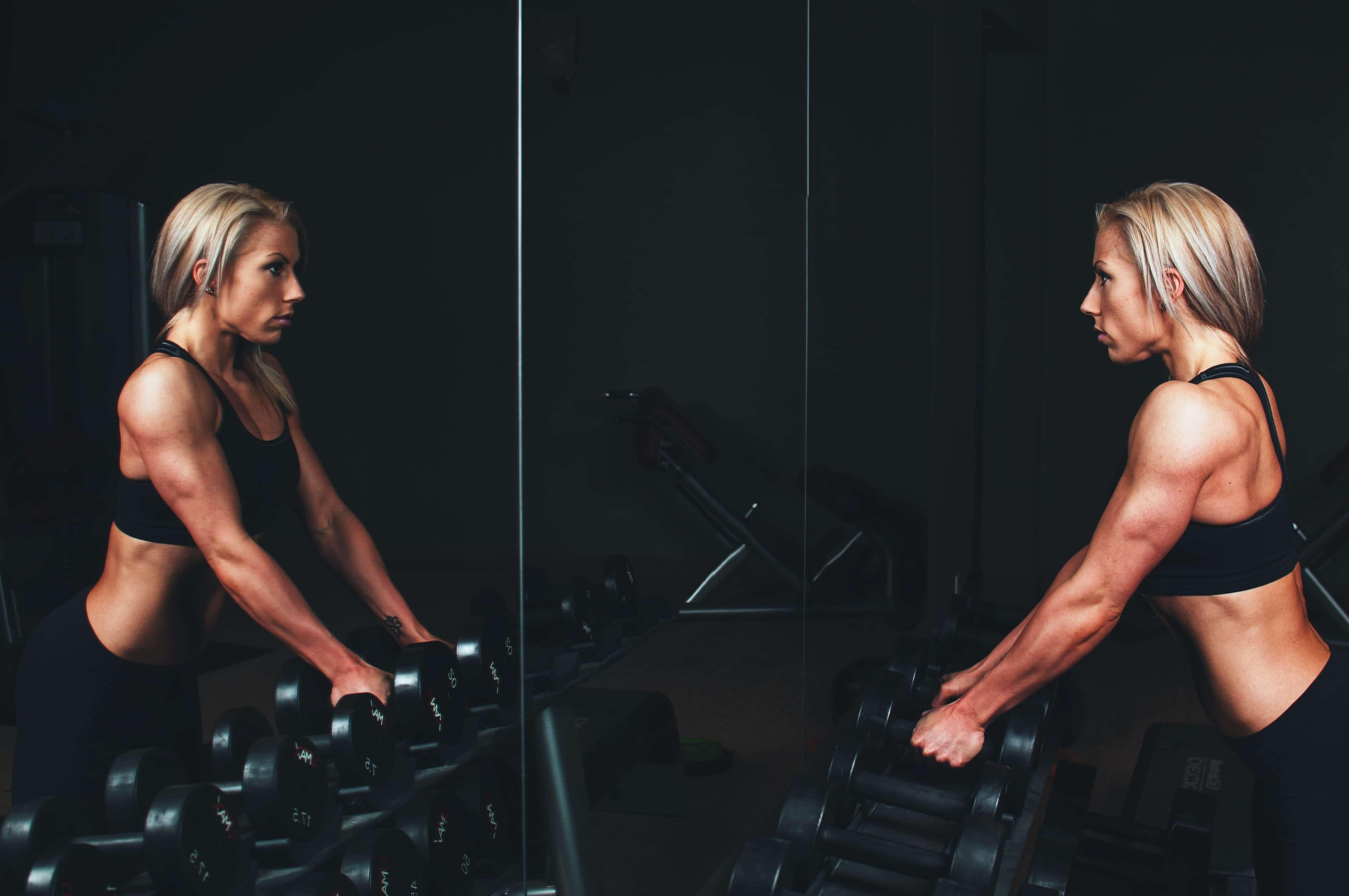 Músculos y cuerpo humano