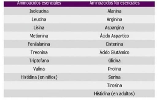 Propiedades del azufre: lista de aminoácidos esenciales y no esenciales. @raquel_mgo en Instagram.