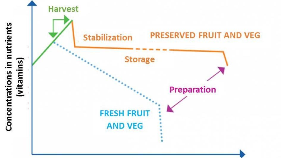 Disminución del contenido de vitaminas (en eje de ordenadas) s lo largo del tiempo postcosecha (en eje de abscisas). Fuente INRA 2007