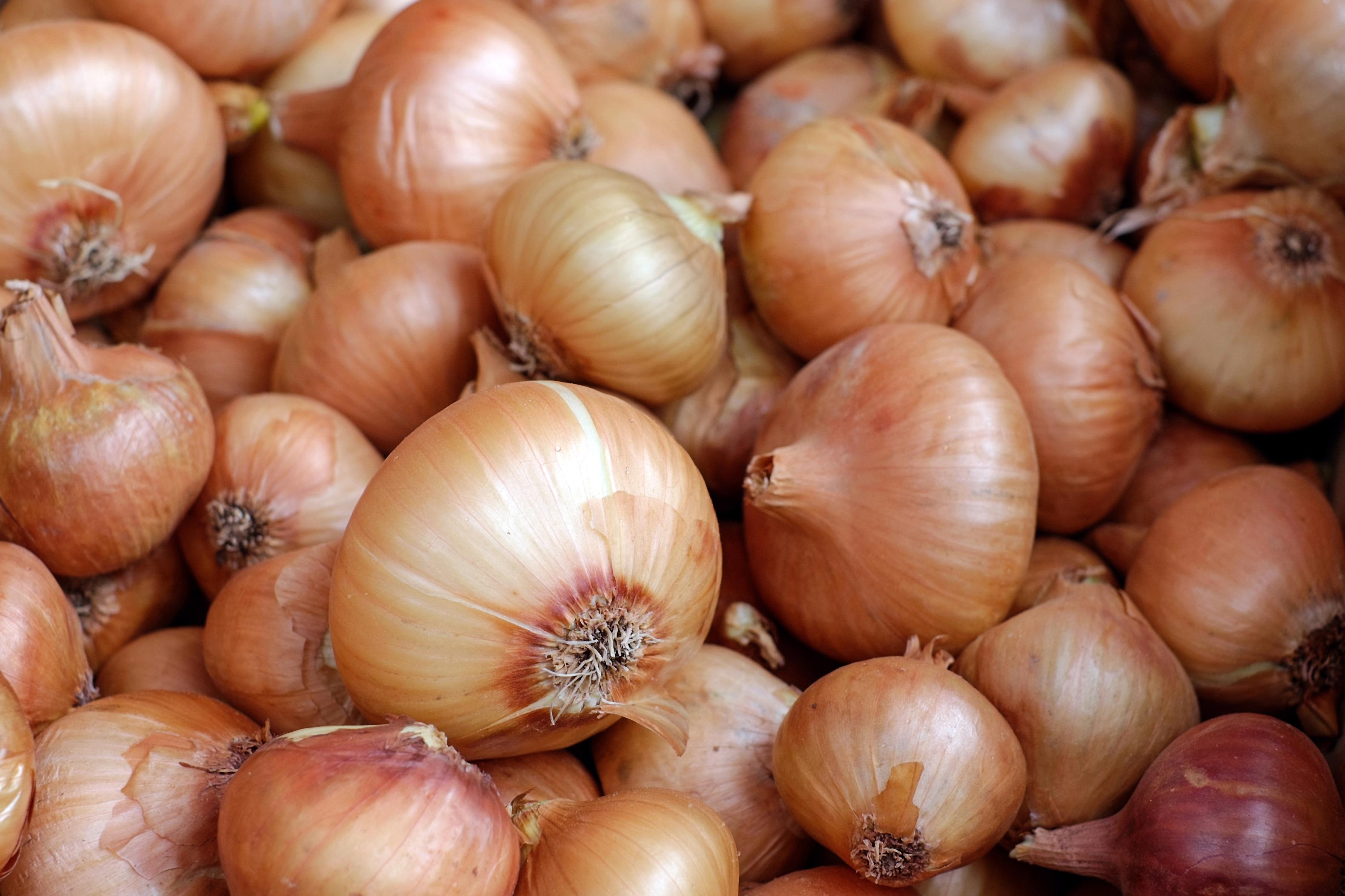 Las cebollas son el ingrediente estrella de esta sencilla, económica y sabrosa receta